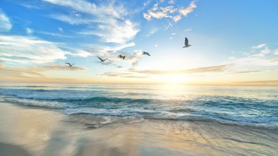 Giornata Mondiale della Meteorologia - Oceano