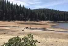 siccità california