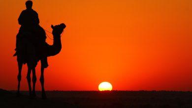 caldo deserto