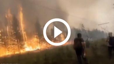 siberia incendi 2021