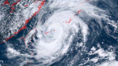tifone in-fa giappone
