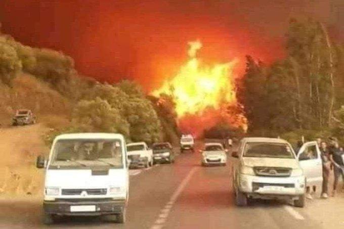 incendi Grecia algeria