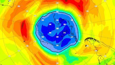 buco ozono 2021