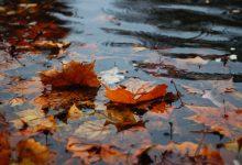 meteo autunno pioggia